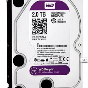 Hd Wester Digital 2tera Byte PURPLE em salvador